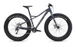 Specialized Hellga Bikes